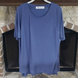 The impeccable pig blue top
